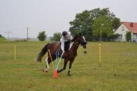 Mounted Games, Foto: Landhaus Parsteinsee